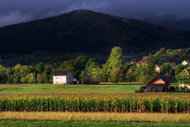 Cornfield, Lika County, Croatia