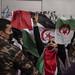 2020_11_18 Concentració per la llibertat del poble saharauí_Xavi Ariza(02)