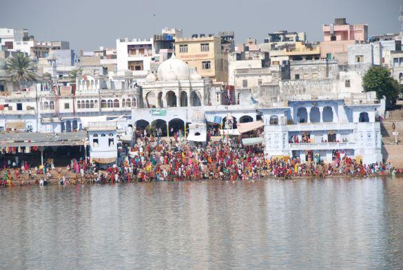 DSC_2186IndiaPushkarCamelFair