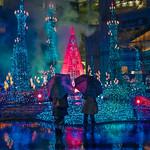 Tokyo Tree