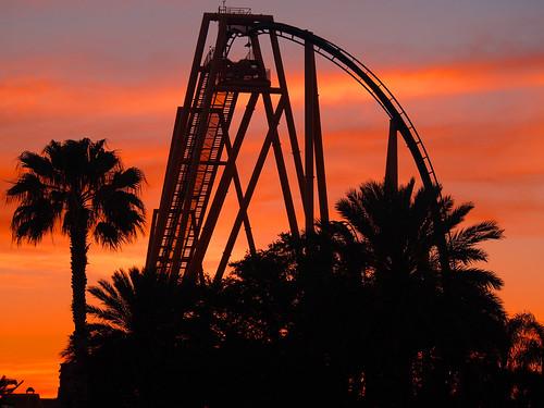 sunset dusk silhouette rollercoaster themepark buschgardens florida