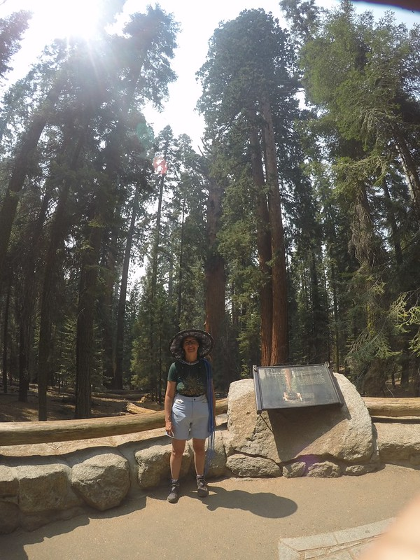 As long as we were there, we took a day-hike to the General Sherman Tree with the rest of the tourists