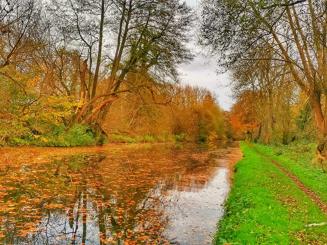 Dunston, South staffordshire District, England
