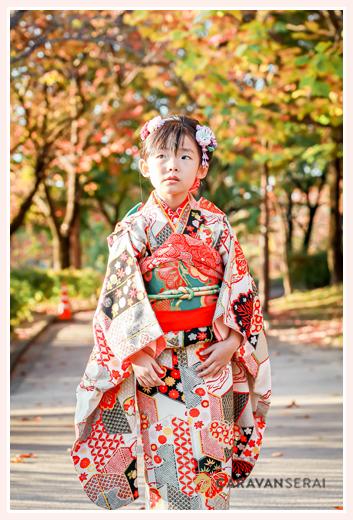 七五三 紅葉の季節(11月) 公園で後撮り 7才の女の子
