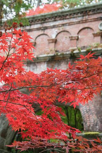 京都 南禅寺水路閣と紅葉