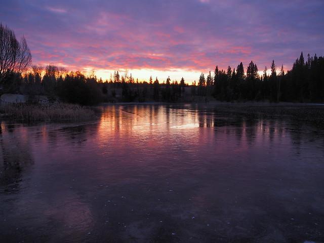 shiny ice on the lake