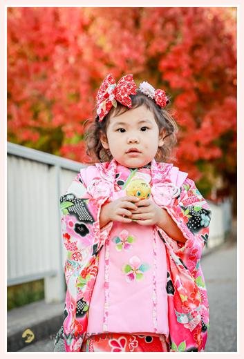七五三 後撮り 紅葉を背景に公園で