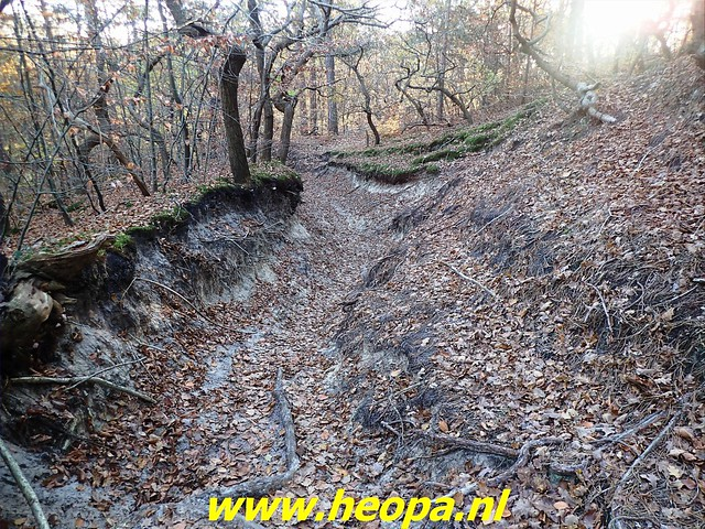 2020-11-18 Schoorl 28 km (109)