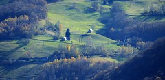 Le Peyras (Campan, Hautes-Pyrénées, Occitanie, Fr) – Les vertes prairies