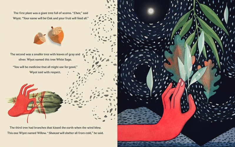 Waa'aka: The Bird Who fell in Love with the Sun by Cindi Alvitre and illustrated by Carly Lake
