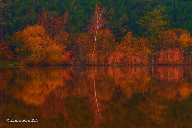 Autumn colors and reflections - Őrség National Park, Hungary
