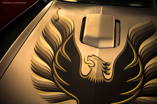 1979 Trans Am Screaming Chicken | by Dejan Marinkovic Photography