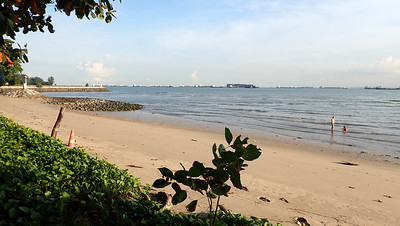 Living shores of East Coast Park