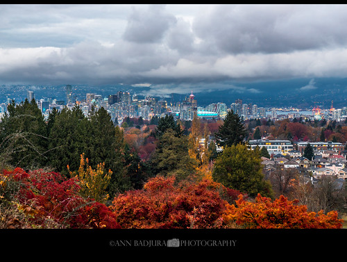 vancouver bc britishcolumbia canada fall autumn queenelizabethpark littlemountain view mountains 604now miss604 ctvphotos canadianbeauty insidevancouver iamcanadian colourfulvancouver explorebc trees city urban park leaves downtownvancouver 24hrvancouver photonewsgallery pacificnorthwest pnw pacificnw georgiastraight vancitybuzz ourcanada annbadjuraphotography scenery landscape layers vancouverlookout bcplace cityhall clouds evening dusk