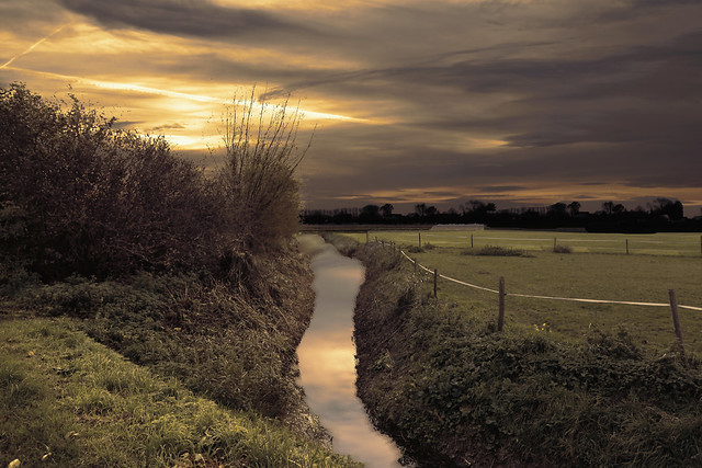 The polder - Zeeland - The Netherlands