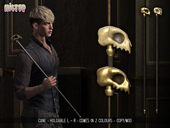 HILTED - Cane
