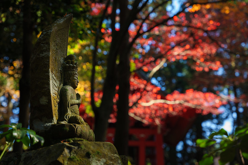 At the precincts of Enryakuji Temple, Hieizan