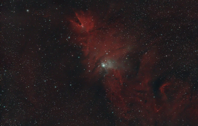 NGC 2264 The Christmas Tree Cluster/Cone Nebula