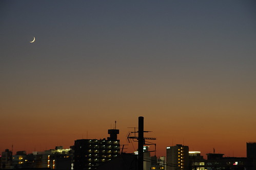 tokyo dusk urban japan city moon crescent sky nippon japon kanto citylife moonlight 日本 東京 関東 月 空 夕日 ビル 建物 cityscape landscape 都会 都