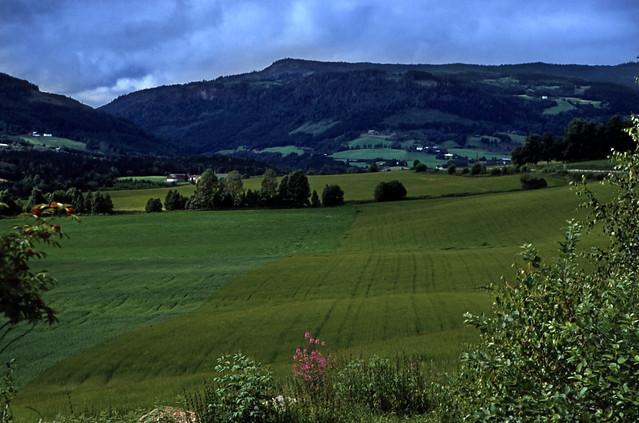 Norwegen 1998 (792) Gudbrandsdalen