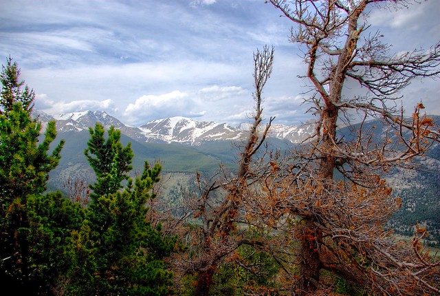 Rocky Mountain Lookout
