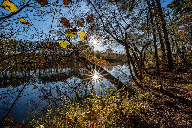 Sun star reflection Dechsendorfer Weiher - 6821