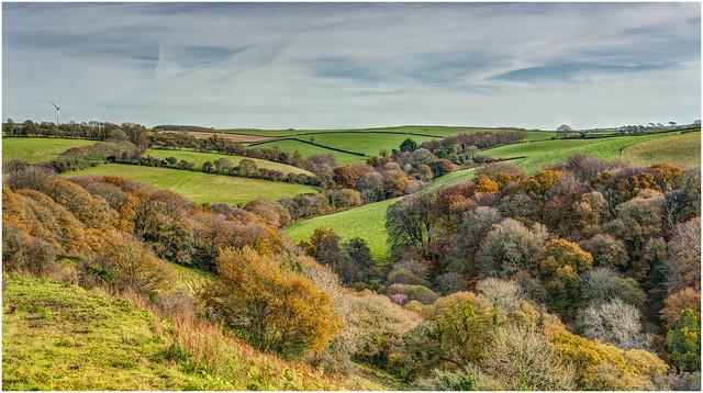 Autumn Pastures - Cornwall.