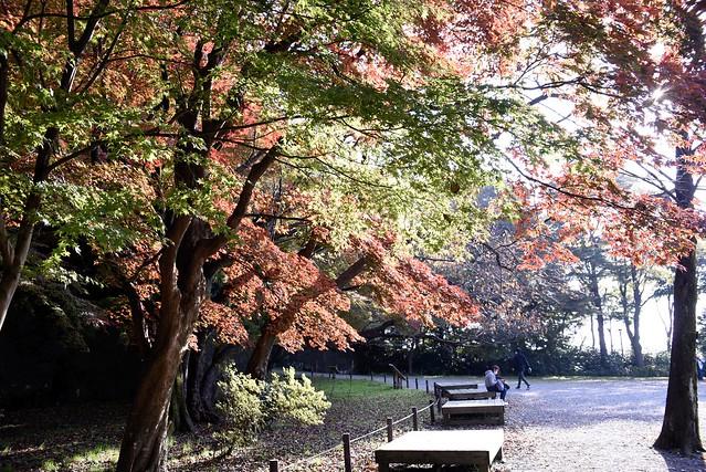 金沢城址公園から兼六園へ
