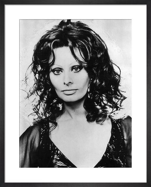 Sophia Loren in