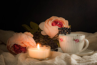 Cup and Saucer | by Bren & Ashley Ryan (Brashley Photography)