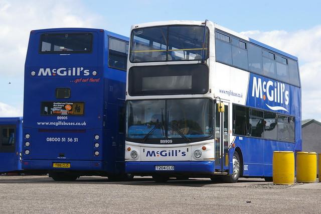 McGILL'S GREENOCK B9909 T204CLO