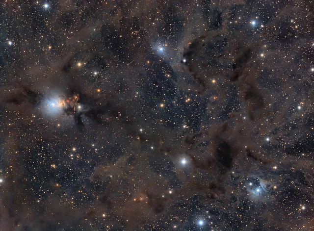 NGC 1333 and Dust Clouds in Taurus