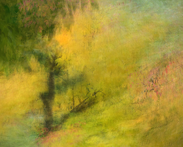 Fall Turning (ICM)