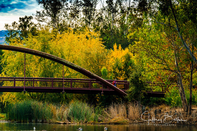 Lake Vasona Fall Colors-39296