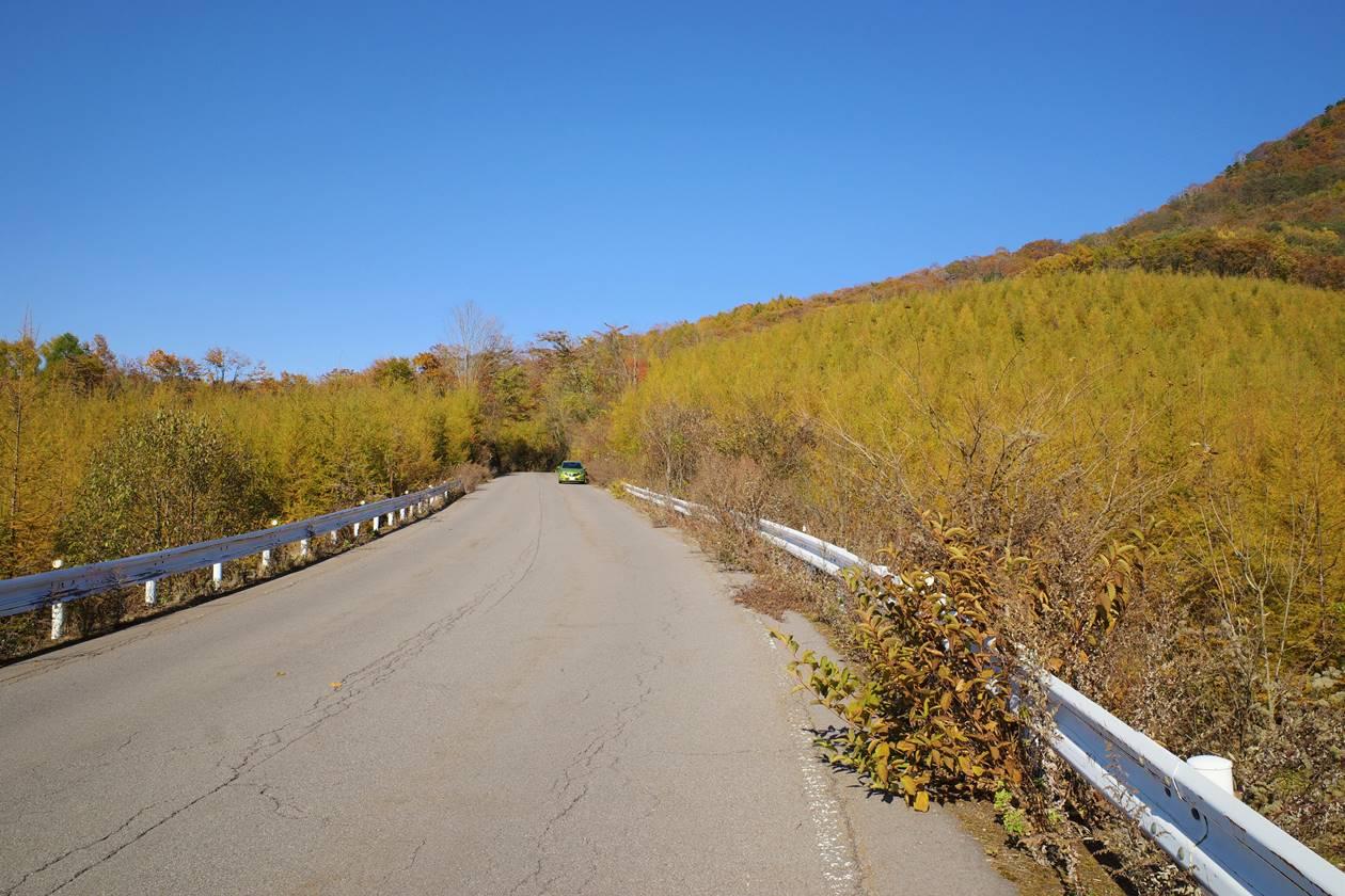 浅間隠山登山口までの林道の紅葉