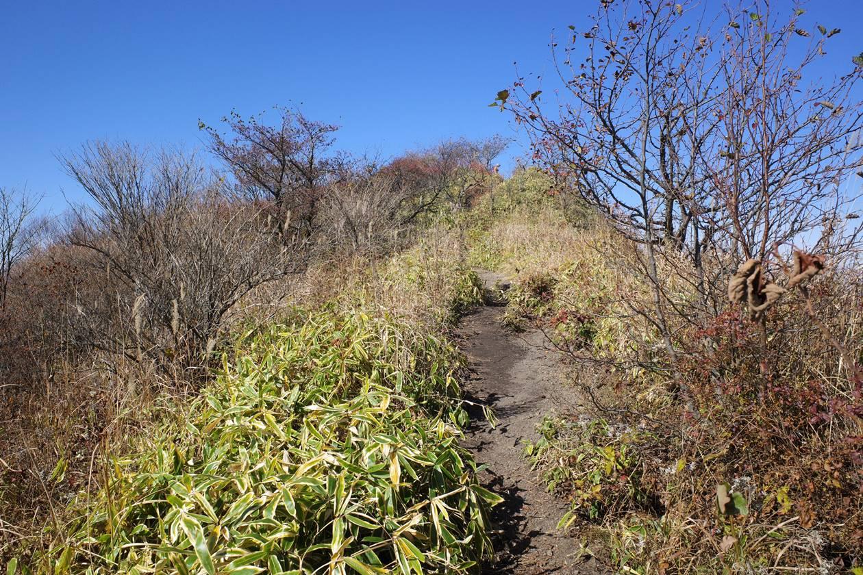 浅間隠山登山 展望の良い稜線ハイク