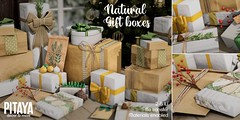 Pitaya - Natural Gift Boxes@Tannenbaum