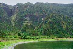 Lagoa do Fogo - San Miguel   -  Azores DSC02786