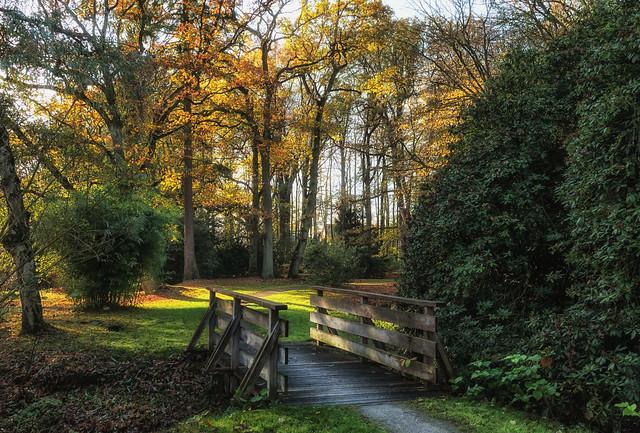 The path to autumn.