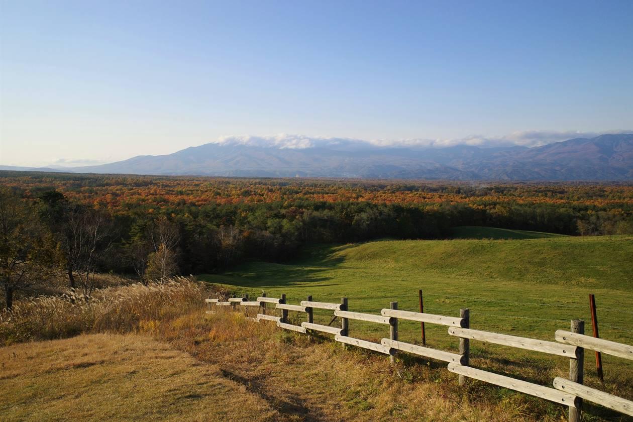 浅間牧場展望台から眺める高原の紅葉風景