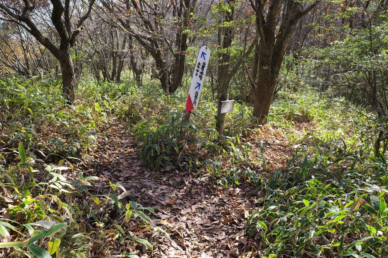 浅間隠山登山道の分岐点
