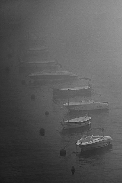 Amarrados a la niebla