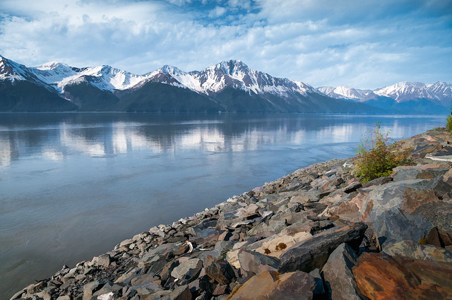 Turnagain Arm Vista