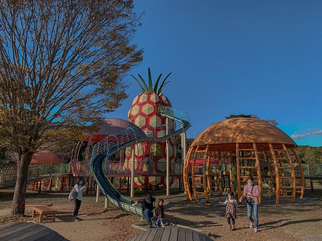 Hamamatsu Fruits Park Tokinosumika