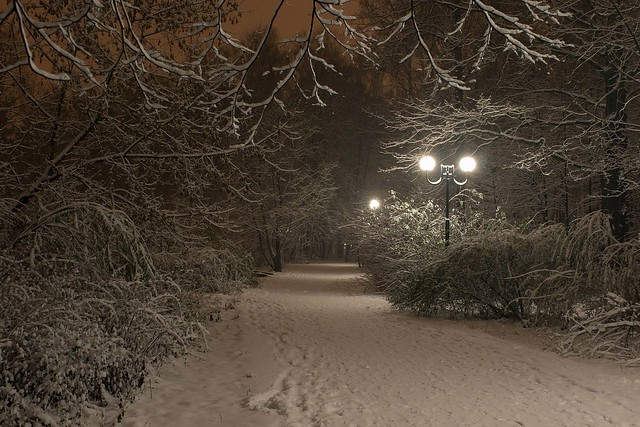 First snowfall in Moscow