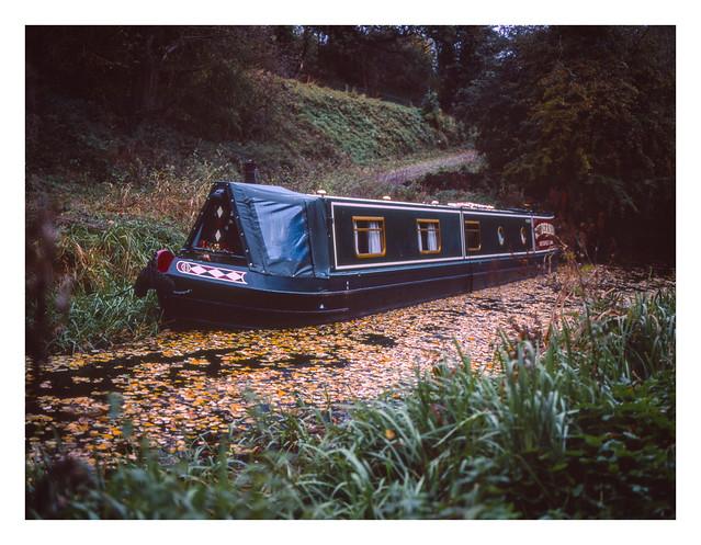 Leafy canal mooring