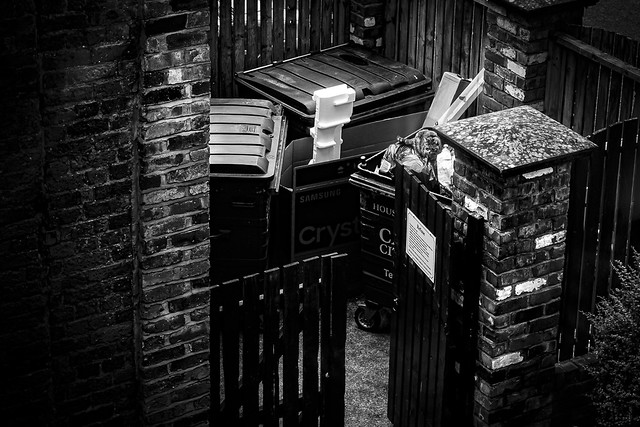 Isolation Throwback Photo. Day 62. 24/05/2020. Cat In The Trash. The Flats. Carlisle.