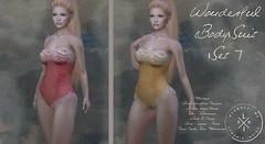 Wonderful Bodysuit