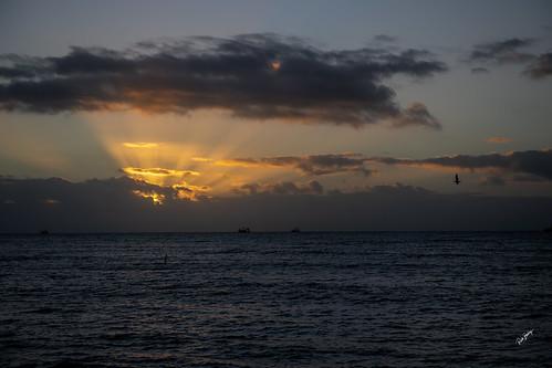sunrise florida keywest nikon d850 ships