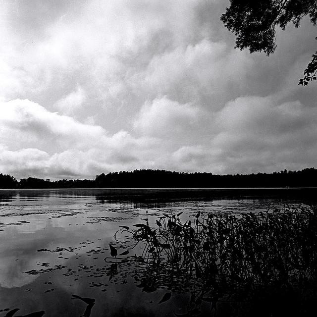 Kingston Lake_Camp Lincoln